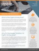 DynTek Digital Workspace 2017_Page_1-1