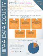 HIPPA Assssment_DynTek_Page_1