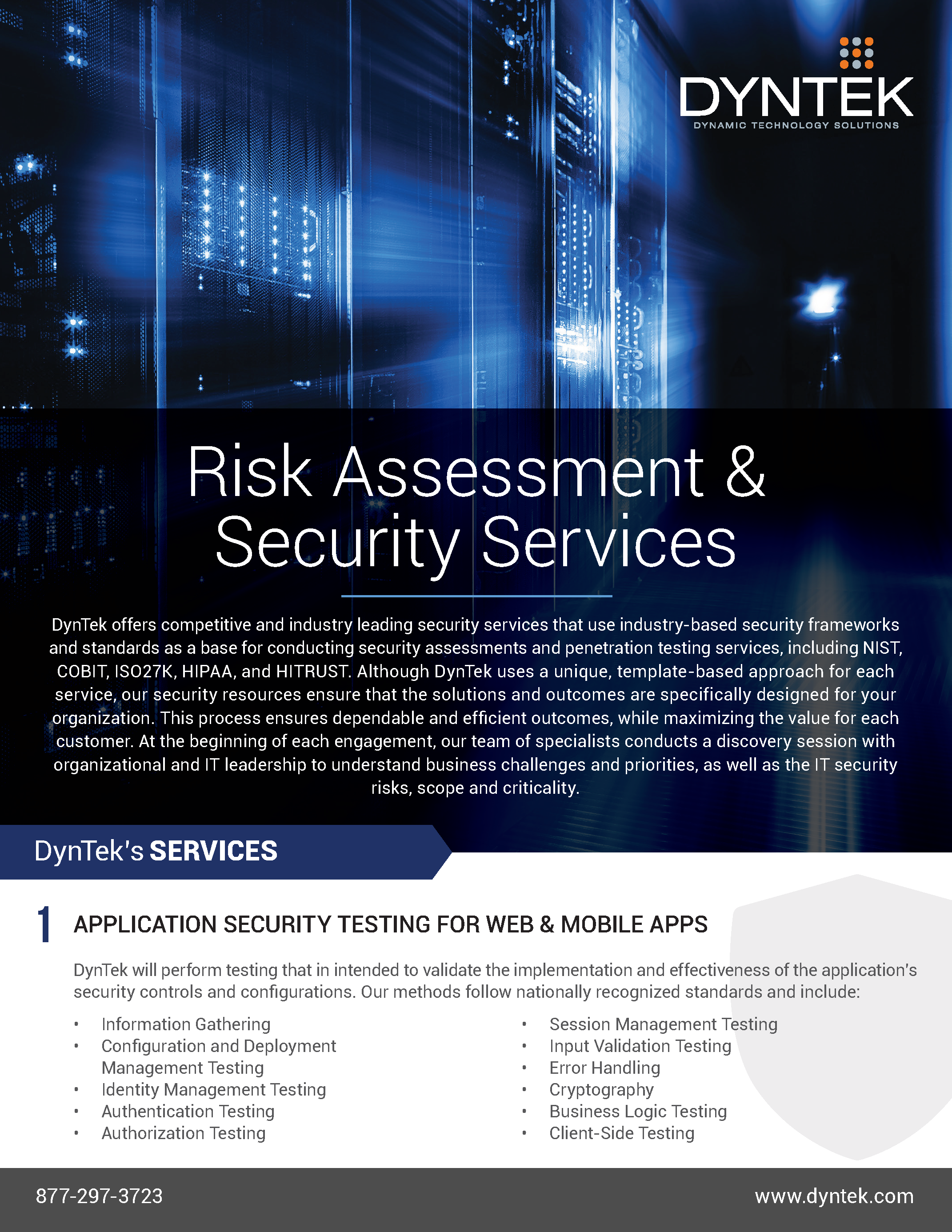 Risk Assessment-Security Services-DynTek