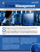 Risk Management-DynTek Final_Page_1-1