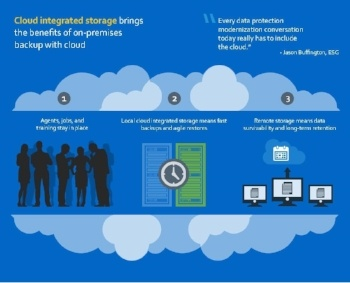 VESG_Infographic_NetApp_May_2015-019484-edited.jpg