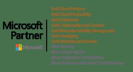 microsoft-gold-silver-logo-2020