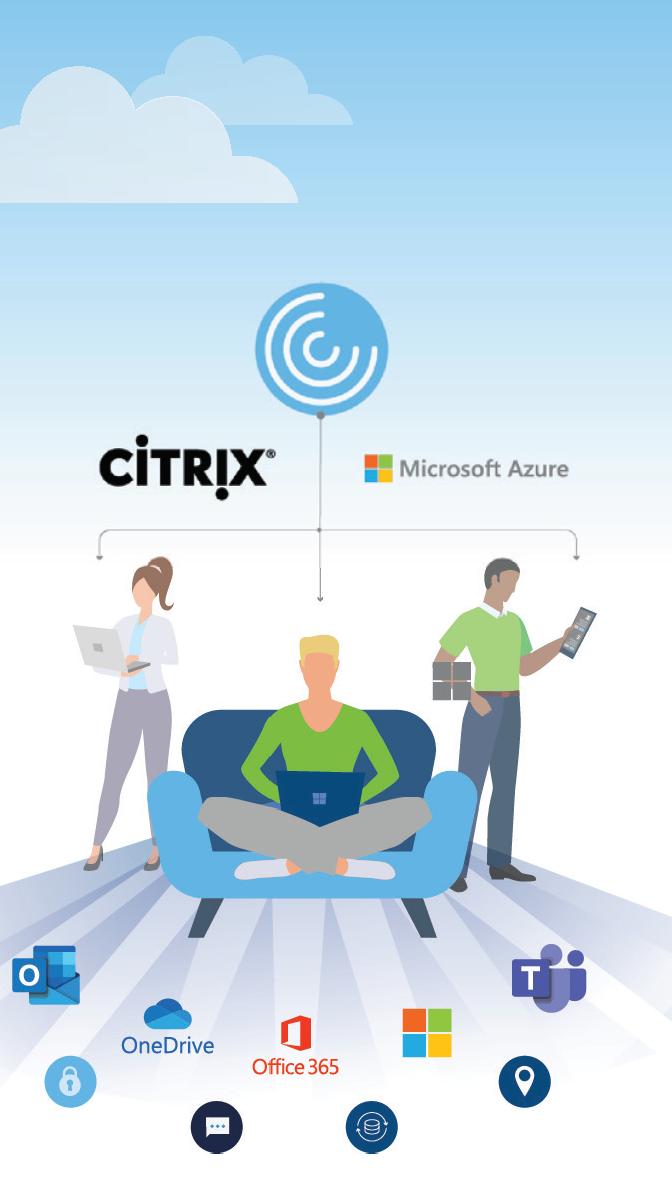 eBook - Desktops as a Service with Citrix_Page_04-2